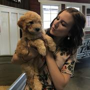 Rebekah C. - Pikeville Pet Care Provider