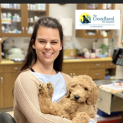 Jessie V., Pet Care Provider in Goleta, CA with 2 years paid experience