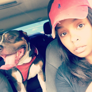 Brittany B., Pet Care Provider in Brandon, MS with 6 years paid experience