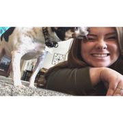 Julia S. - Midway Park Pet Care Provider