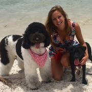 Kelsey O., Pet Care Provider in Miami, FL 33181 with 8 years paid experience