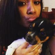 Jensen C. - Cedar Rapids Pet Care Provider
