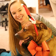 Lauren W., Pet Care Provider in Saint Louis, MO with 4 years paid experience