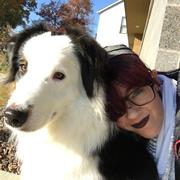 Lindsey O. - Edwardsville Pet Care Provider
