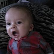 Chassy M. - Royston Babysitter