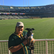 Katelyn S., Pet Care Provider in San Diego, CA with 4 years paid experience