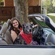 Elyse S., Pet Care Provider in Greensboro, NC with 5 years paid experience