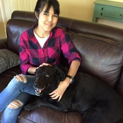 Yanisa T., Pet Care Provider in Long Island City, NY 11101 with 7 years paid experience