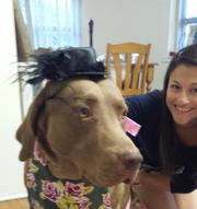 Stephanie R. - East Hampton Pet Care Provider
