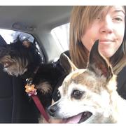 Ashley J. - Antioch Pet Care Provider