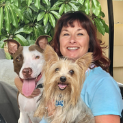 Dena B. - Clearwater Pet Care Provider