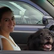 Zoe P. - Northampton Pet Care Provider