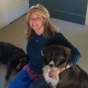 Julie M. - Granby Pet Care Provider