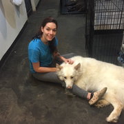 Danielle C., Pet Care Provider in Kansas City, MO 64138 with 2 years paid experience