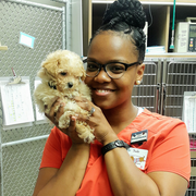 Sade H. - Knoxville Pet Care Provider