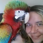 Dani H. - Charleston Pet Care Provider