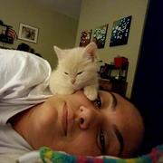 Laura S. - Little Rock Pet Care Provider