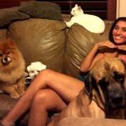 Teena R. - Henderson Pet Care Provider