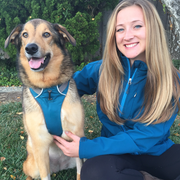Cassidy O., Pet Care Provider in Lafayette, CO 80026 with 5 years paid experience