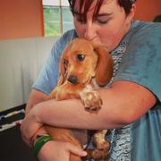 Kaitlyn C. - Bridgewater Pet Care Provider