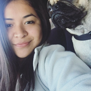 Yareli T., Pet Care Provider in Menlo Park, CA with 1 year paid experience