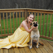 Baylee S. - Lore City Pet Care Provider