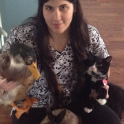 Cassandra P., Pet Care Provider in Warren, RI with 1 year paid experience