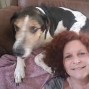 Judee M., Pet Care Provider in Petaluma, CA with 5 years paid experience