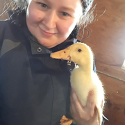 Stacy C., Pet Care Provider in Bristol, CT with 11 years paid experience