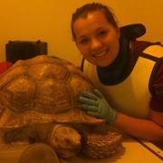 Stephanie W. - Holtsville Pet Care Provider