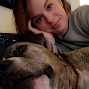 Kaytlyn N. - El Dorado Hills Pet Care Provider