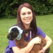 Anna L., Pet Care Provider in New Castle, IN with 8 years paid experience