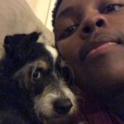 Marco G. - Berkeley Pet Care Provider