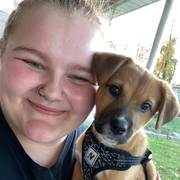 Eden M., Pet Care Provider in Salem, VA with 1 year paid experience