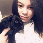 Emely V., Pet Care Provider in Allentown, PA 18109 with 4 years paid experience