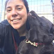 Fabiola A. - Hayward Pet Care Provider