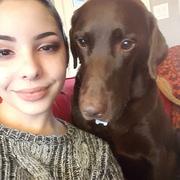 Cassandra D. - Bingen Pet Care Provider