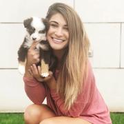Brittnee J. - North Richland Hills Babysitter