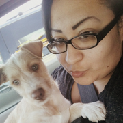 Arlette Z. - El Paso Pet Care Provider