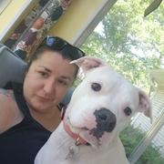 Allison S. - Brighton Pet Care Provider
