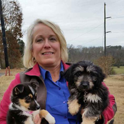 Lisa M. - Brandon Pet Care Provider