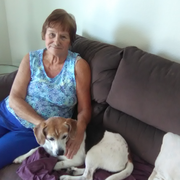 Arlene M., Pet Care Provider in Hendersonville, NC with 10 years paid experience