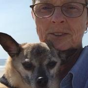 Deb K. - Scarborough Pet Care Provider