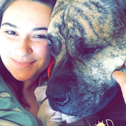 Molly M. - New Bedford Pet Care Provider