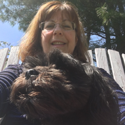 Darlene F., Pet Care Provider in Wethersfield, CT with 1 year paid experience