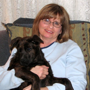 Amy I., Pet Care Provider in West Brookfield, VT with 30 years paid experience